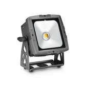 Cameo FLAT PRO FLOOD IP65 WW - Outdoor Flood Light with 50 Watt Warm White COB LED in black housing